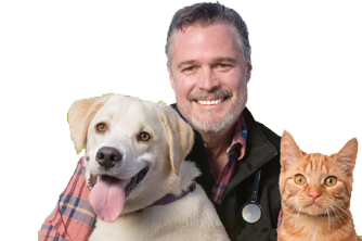 Dr Bruce S Articles Vets All Natural